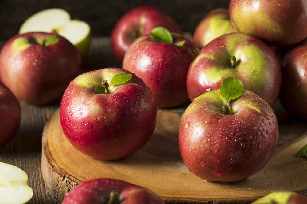 Organic Red Mcintosh Apples