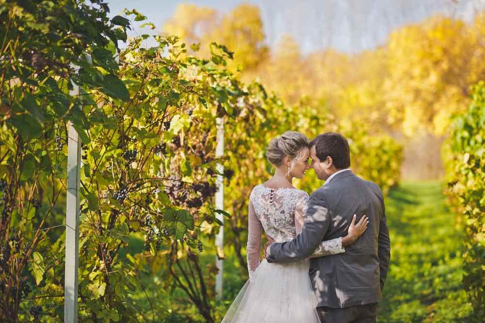 Couple at a Vineyard Wedding