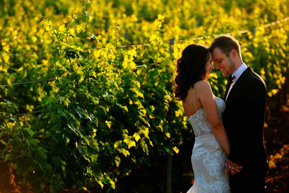 bride and groom walking in vineyard at sunrise