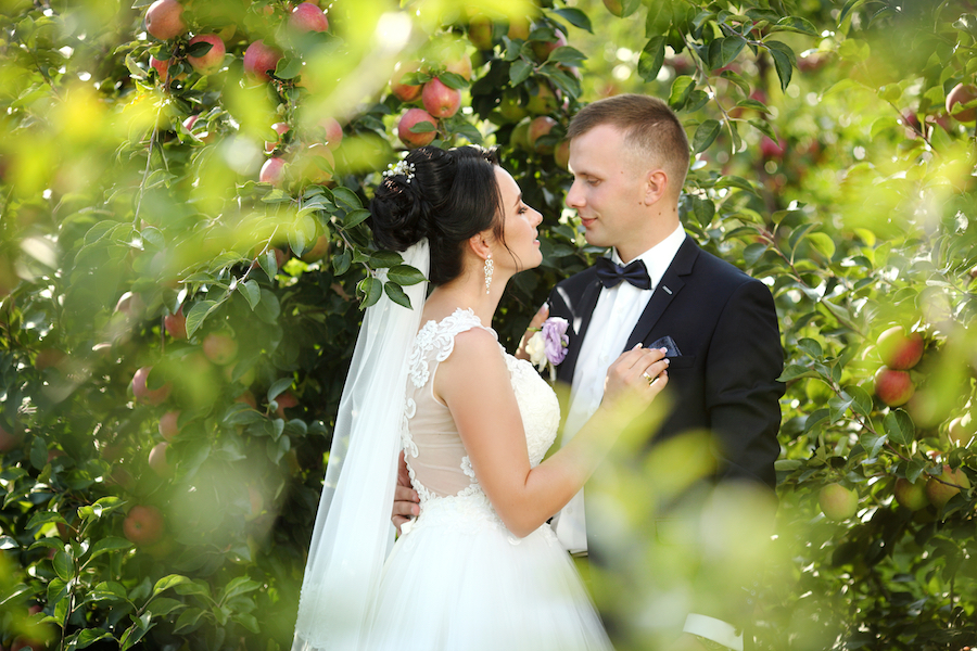 A bride and groom looking at each other while standing among apple trees in an orchard -- some of the best apple orchards in Missouri make great wedding venues.