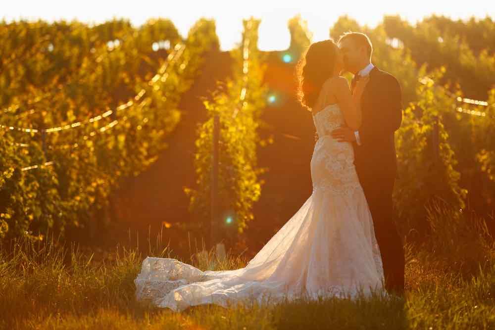 wedding couple walking in vineyard at sunset