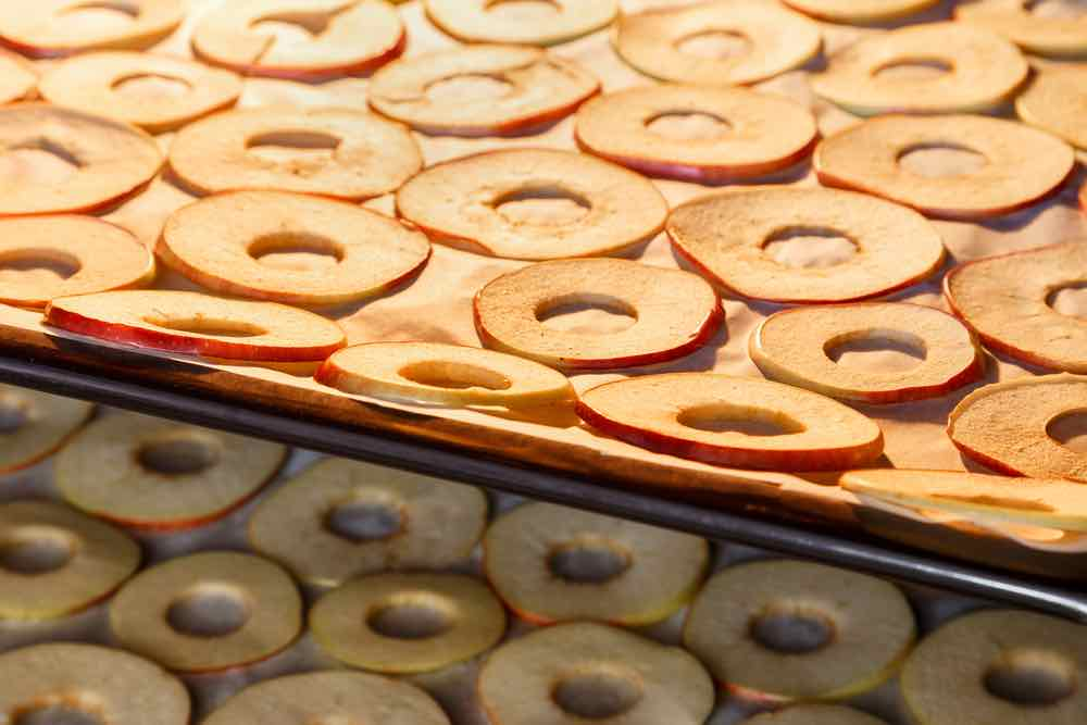 Dried Apple Chips in the Oven
