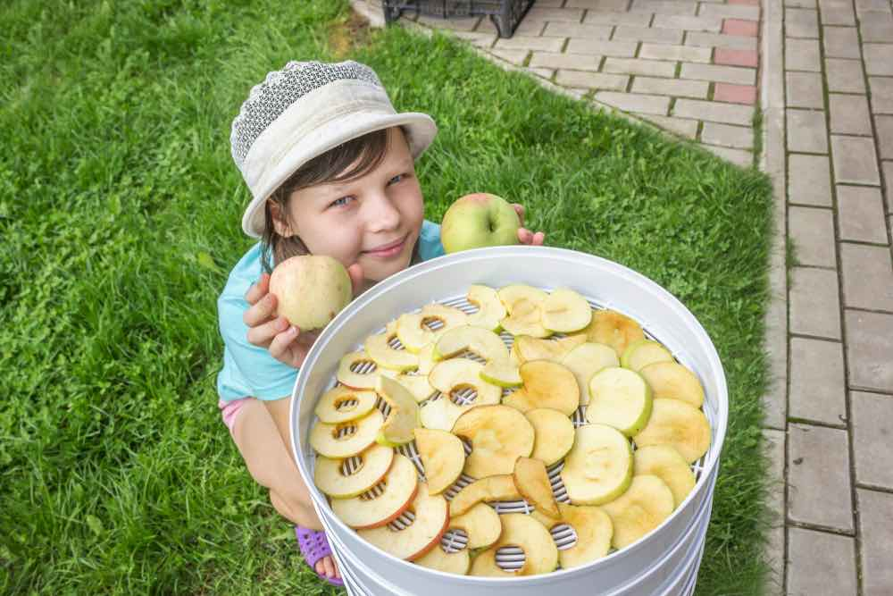 Little Girl With Dehydrated Apples