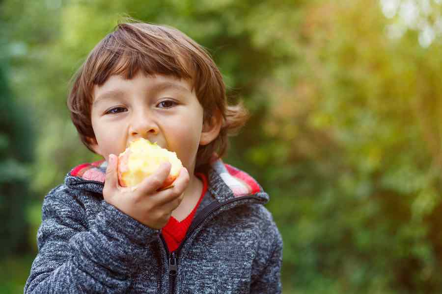 Child eating Ambrosia Apples