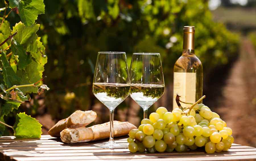 White Wine with Grapes at Vineyard