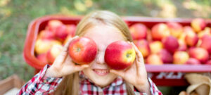 when do apple orchards open 2020 mn