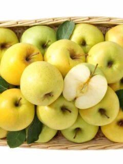 Dorsett Golden Apples