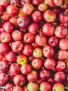 Pixie Crunch Apple