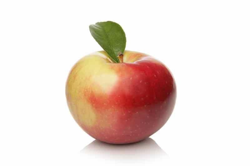 Zestar Apple.