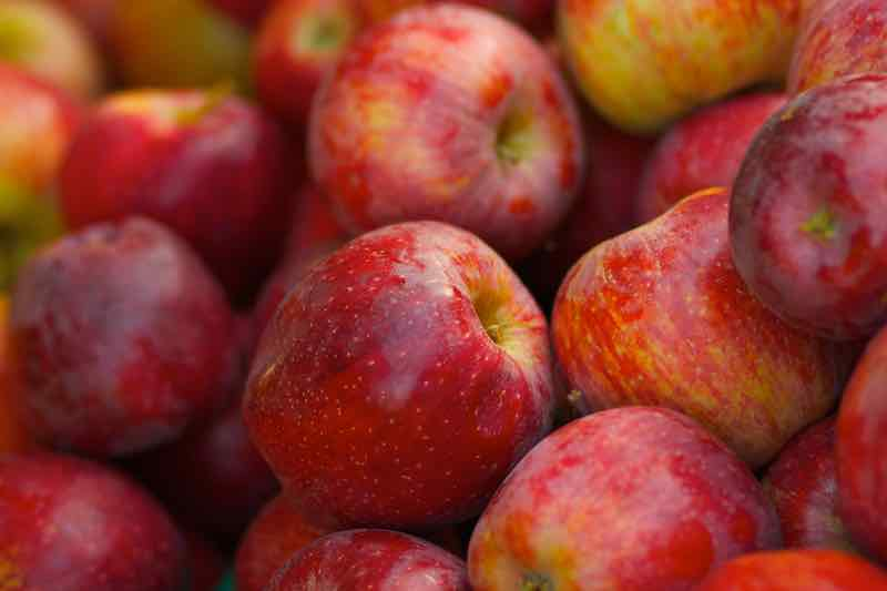 red Braeburn apples