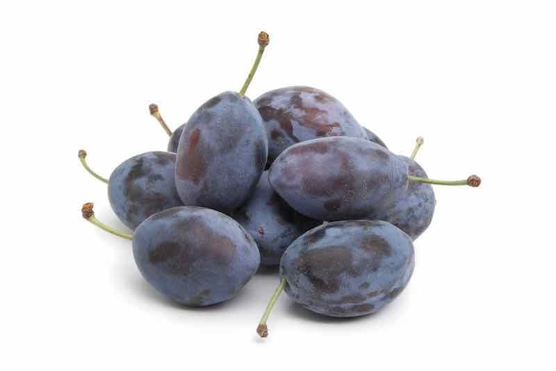 Purple Damson Plums
