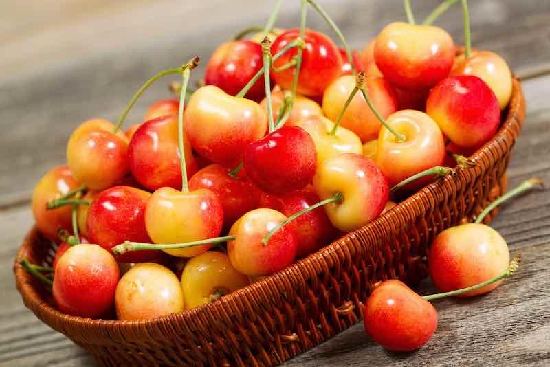 Rainier Cherries in a Basket