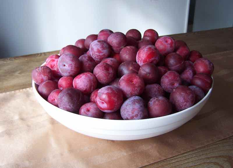 Toka Plums in a Large Bowl