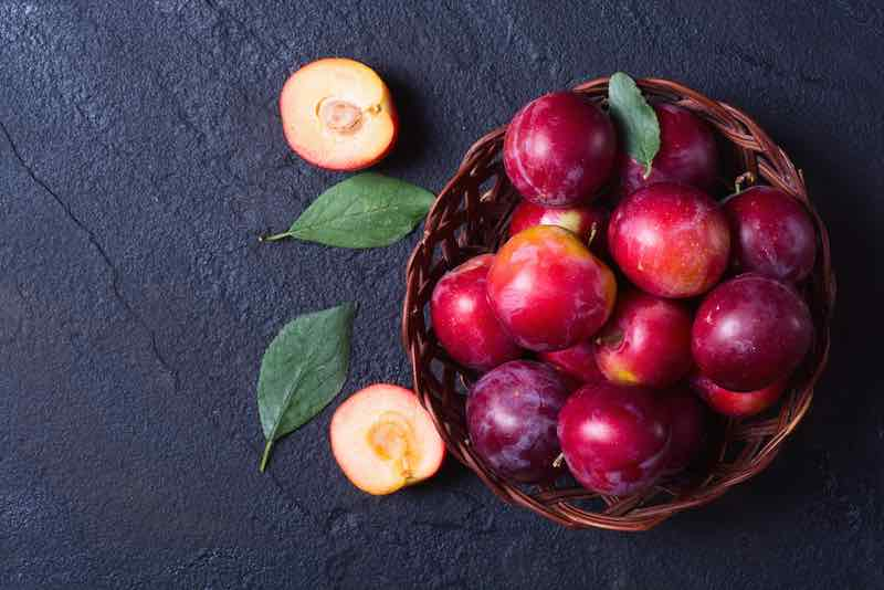 Basket of Red Plums