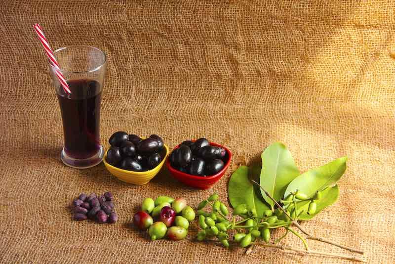 Java Plum Health Benefits