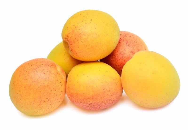Six reddish yellow apricots on a white background.