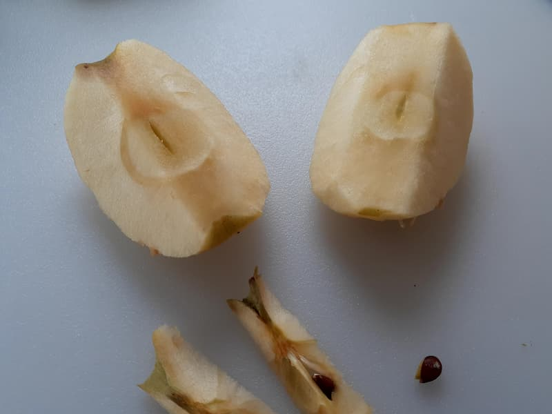 Apples with cores cut off.