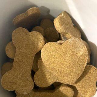 Made-to-Beg-for Homemade Peanut Butter Pumpkin Dog Treats