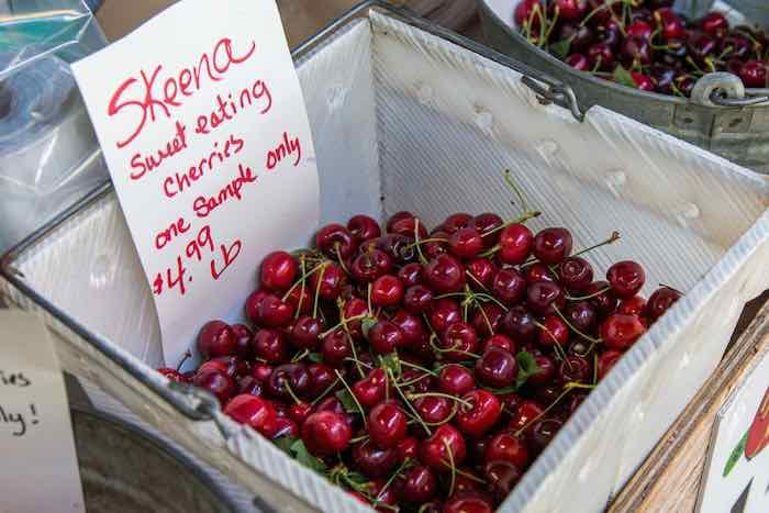Skeena Cherry Basket