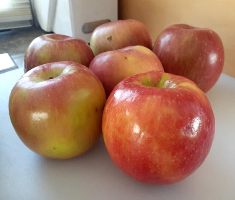 Closeup of Fuji apples.