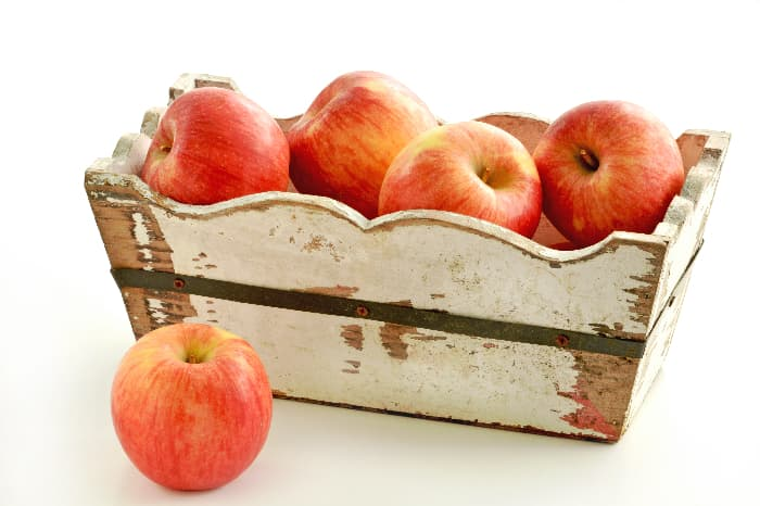 A box of reddish yellow apples from the Autumn Glory Apple tree.