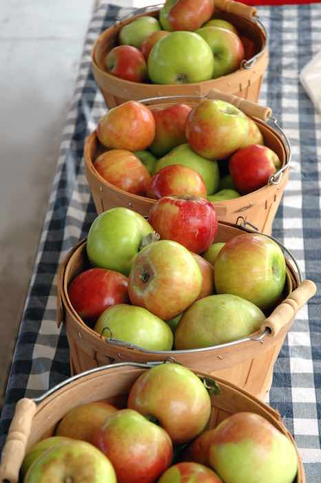 Fresh apples on display at one of the best orchards in North Carolina.