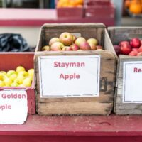 Box of Stayman apples in between other boxes of apples on a red table.