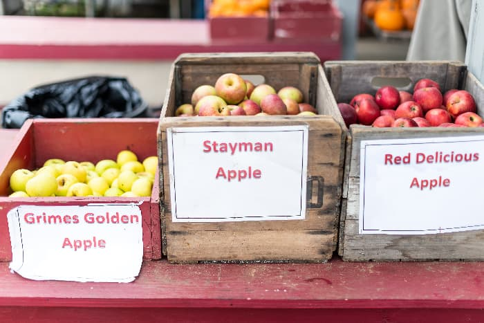 Wooden boxes of apples with signs on them for Grimes Golden Apple, Stayman Apple, and Red Delicious Apple.