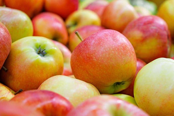 Jonagold apples.