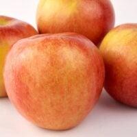 Group of Koru Apples agains white background.
