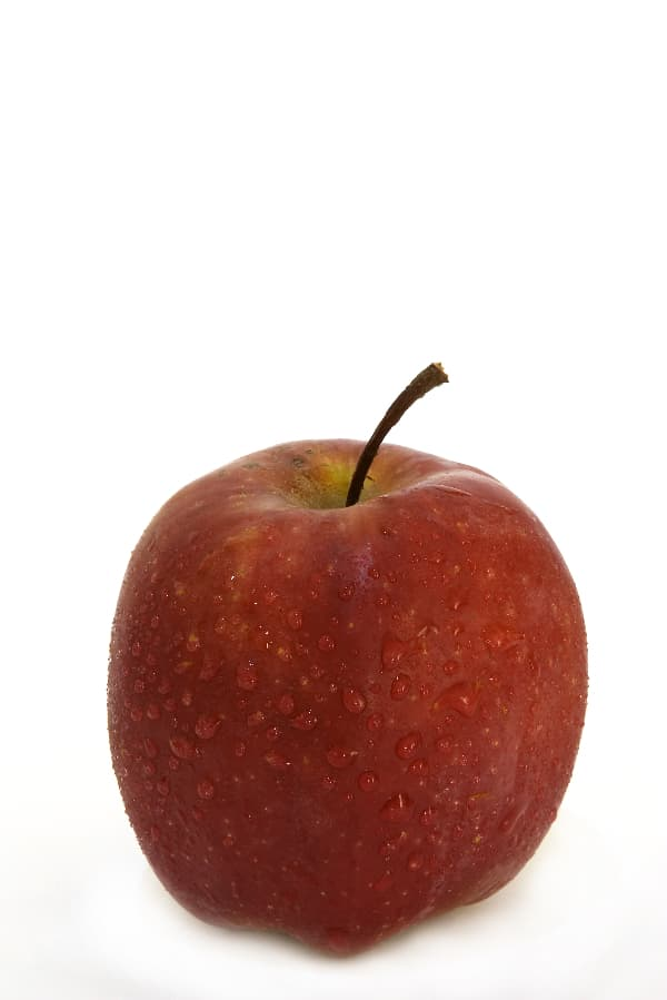 A single red Pacific Rose Apple tree apple against a white background.