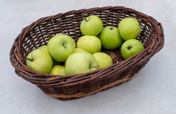Pale yellowis green White Transparent Apple tree apples in a brown rustic woven basket against a white background,