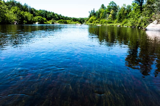 Sunny day view of the blue water and green forest along the banks of the Wolf River in Wisconsin.