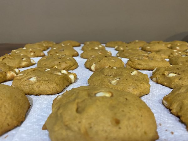 White chocolate chip pumpkin cookies cooling on paper towels.  Allow to cool completely before storing!