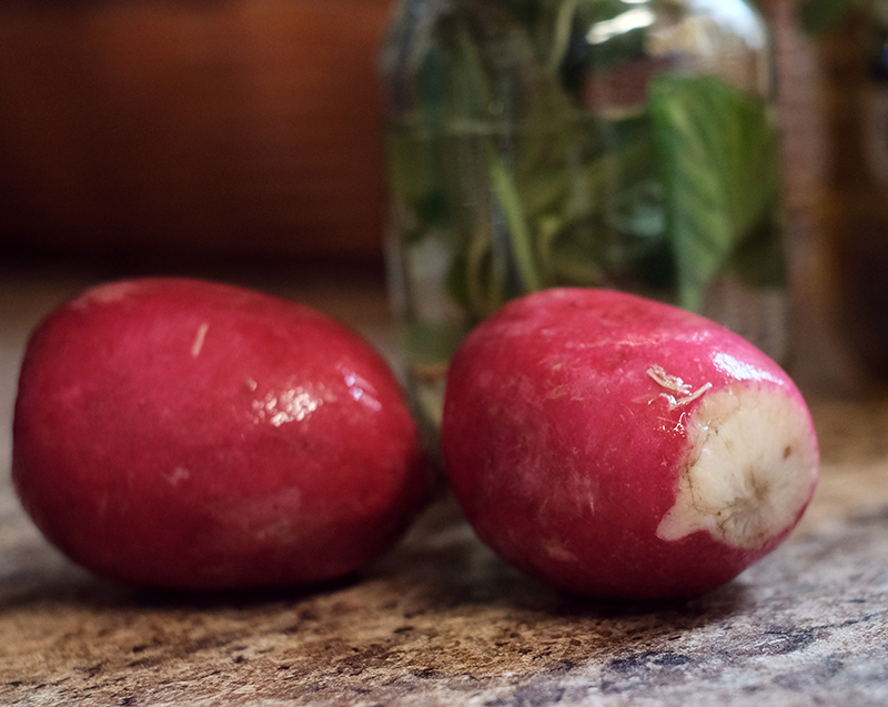 Closeup of two radishes.