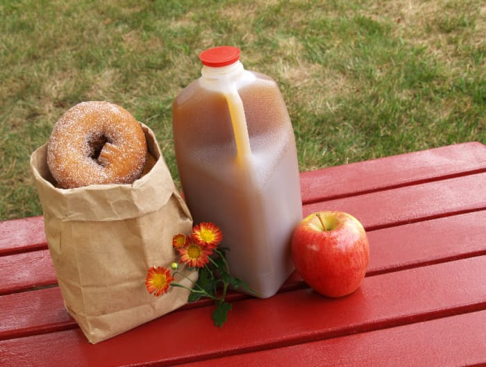 A just of apple cider, a bag of apple donuts and a red apple all arranged on a red picnic table -- cider and donuts are just some of the offerings found at the best apple orchards in Massachusetts.