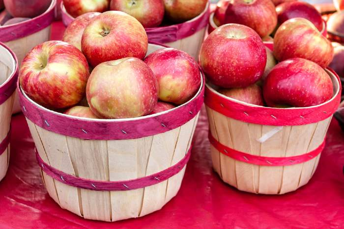 fresh picked red apples in baskets from Fall Harvest Apple Orchard