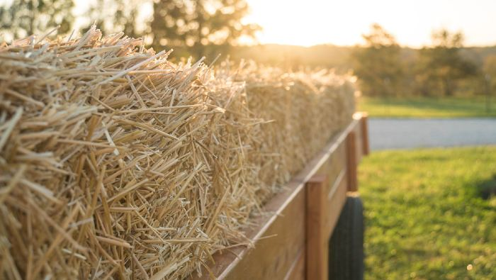 A wagon full of hay in grass.