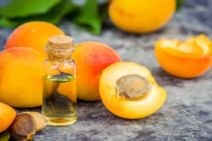 Closeup of a small bottle of apricot kernel oil.  Homeopathic remedies are among the health benefits of apricots.