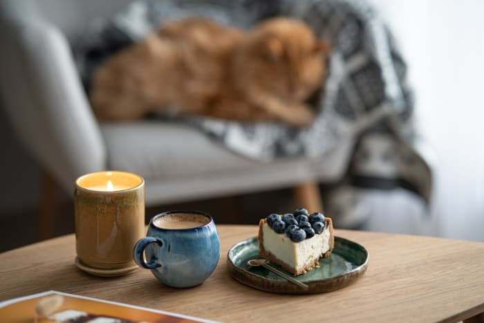 """Coffee and a blueberry dessert on a coffee table with a cat in the background.  Cat owners can feel safe leaving blueberry foods out now that they know the answer to """"Can cats eat blueberries"""" is """"Yes."""""""