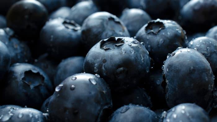 Closeup of wet blueberries.