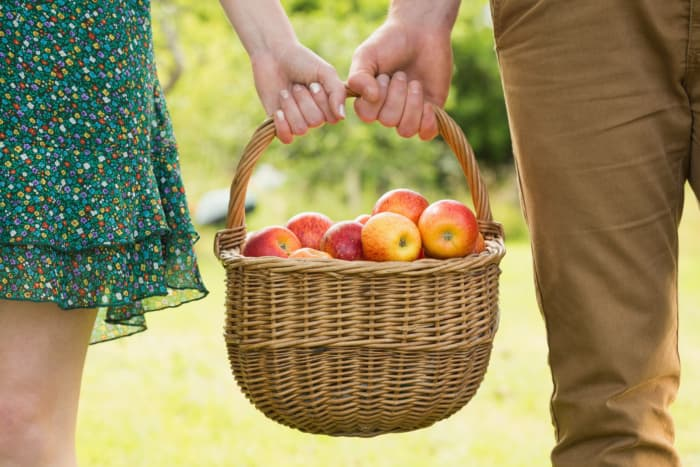 Closeup of couple's hands holding a basket of apples.  New family traditions can begin with a visit to Fireside Orchard and Gardens.