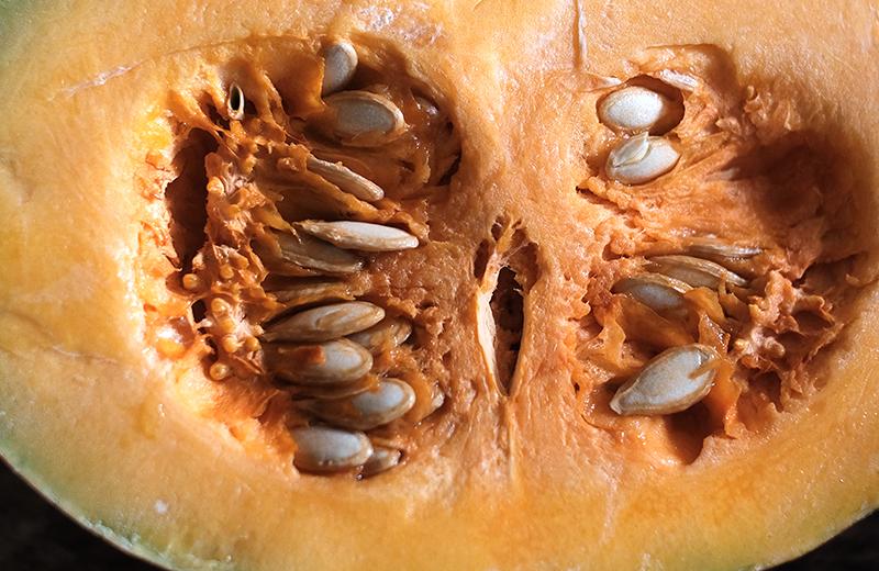 Closeup of the inside of a cut pumpkin half.
