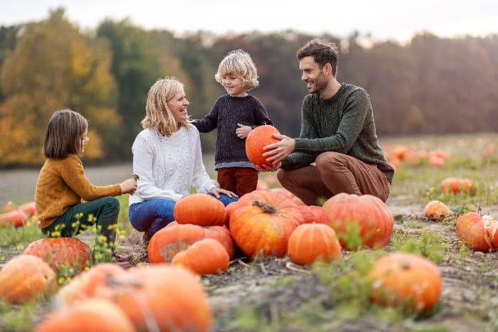 A family with small children enjoying themselves in a pumpkin patch.
