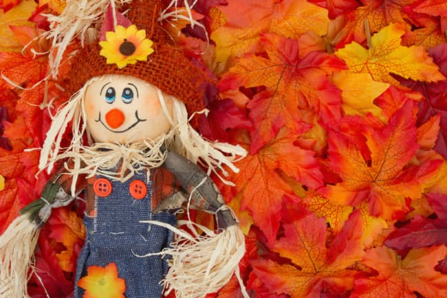 A cute scarecrow lying on brightly colored fall leaves. The Scarecrow Festival is a must-see event at Emma Krumbee's Orchard and Farm.