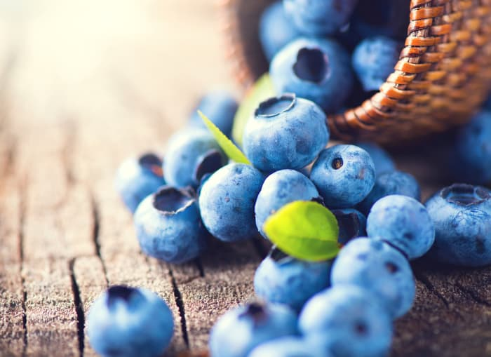 Closeup of spilled blueberries from a tipped over basket.