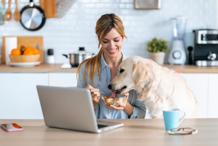 """Woman sharing a bowl of fruit with a dog.  If you're a dog owner who shares fruit snacks with your dog, have you ever stopped to ask """"Can dogs eat apricots?"""""""