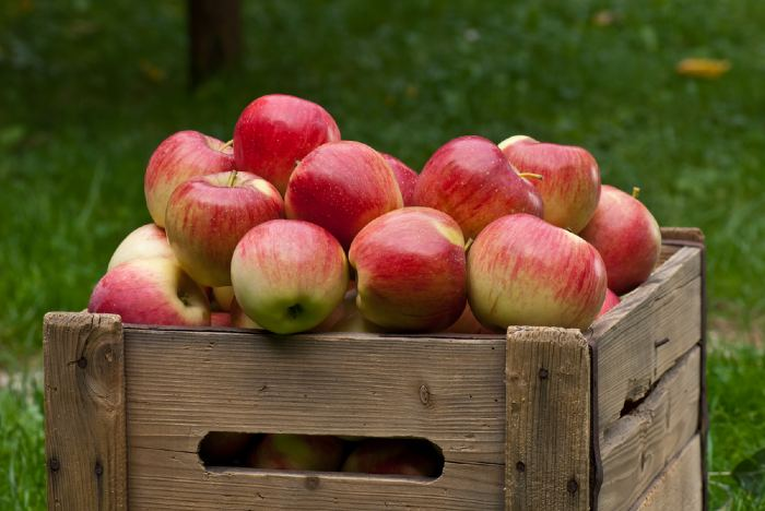 Red and yellow apples in a wooden crate.