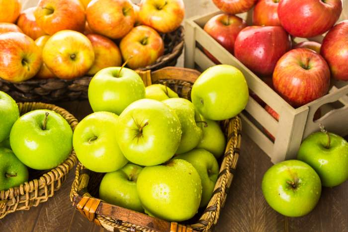 Variety of apples at Nystrom Orchard.