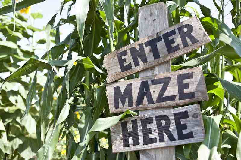 Corn maze sign.